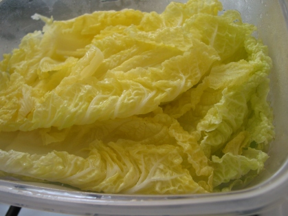 Microwaved cabbage leaves, ready for rolling