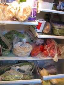 Stuffed fridge right before traveling
